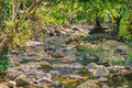 Small Mountain Stream In A Shady Jungle Royalty Free Stock Photos - 85368988