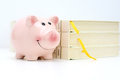 College Fund Concept With Piggy Bank Standing Near A Pile Of Books Royalty Free Stock Images - 85379449