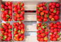 Plastic Box Package Of Red Fresh Strawberries Stock Image - 85385551