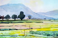 Watercolor Landscape Painting Colorful Of Cottage And Rice Field. Stock Images - 85408534