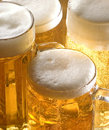 Beer Stock Photo - 8553540