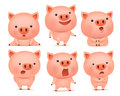 Collection Of Funny Pig Characters In Different Emotions Stock Photography - 85565282