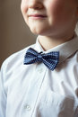 Young Boy With Blue Bow Tie Stock Photography - 85591372