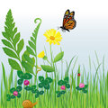 Meadow Flowers And Insects/eps Royalty Free Stock Images - 8564189