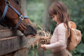 Girl Feeding Her Horse Royalty Free Stock Photos - 85627748