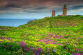 Yellow Gorse And Violet Heather Flowers, Cap Frehel, France Stock Photography - 85632312