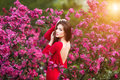 Spring Touch. Happy Beautiful Young Woman In Red Dress Enjoy Fresh Pink Flowers And Sun Light In Blossom Park At Sunset. Royalty Free Stock Photography - 85647937