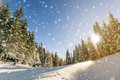 Pine Trees In Mountains And Falling Snow In Fairy Tale Winter  Stock Images - 85670294