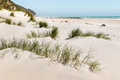 Sand Dunes At Farewell Spit Beach In New Zealand Royalty Free Stock Photography - 85743187