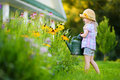 Cute Little Girl Watering Flowers In The Garden At Summer Stock Photo - 85747420