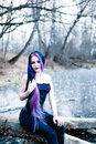 Portrait Of The Gothic Woman On The Frozen Lake Stock Photography - 85750022