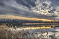 Tranquil Chesapeake Bay Pond During Winter At Sunset Royalty Free Stock Image - 85793806