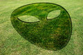 Alien Face Fake Crop Circle Meadow Stock Image - 85868361