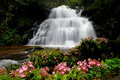 Waterfall In Forest Stock Photos - 85908373