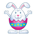 Bunny In Cracked Easter Egg Shell Royalty Free Stock Photos - 85921888