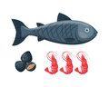 Vector Illustration For Artwork Codfish. Royalty Free Stock Photo - 85935315