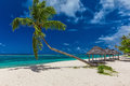 Tropical Beach With A Single Palm Tree And A Beach Fale Stock Image - 85936921