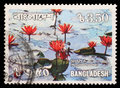 Stamp Printed In Bangladesh Shows Water Lilies Royalty Free Stock Photography - 85965977
