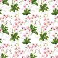 Orchid Tropical Leaves And Flowers Background. Seamless Pattern Royalty Free Stock Photography - 85973057