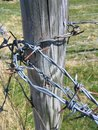 Barb Wire Royalty Free Stock Photos - 862918