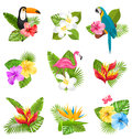 Set Composition With Tropical Flowers, Exotic Bird And Plants Royalty Free Stock Images - 86002049