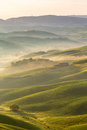 Rolling Fields With Fog Royalty Free Stock Image - 86002976