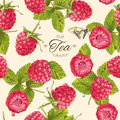 Vector Raspberry Tea Pattern Royalty Free Stock Images - 86039739