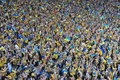 Crowd Of Fans Stock Images - 86098724