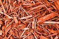 Red Cypress Mulch Stock Photo - 8617070
