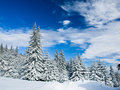 Winter Landscape Stock Images - 8617244