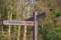 Quirky Signpost In Shere, England. Royalty Free Stock Photo - 86101955