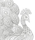 Peacock. Adult Antistress Coloring Page. Black And White Hand Drawn Doodle For Coloring Book Royalty Free Stock Image - 86112586