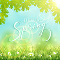 Lettering Hello Spring On Nature Background With Leaves Royalty Free Stock Image - 86152656