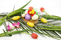 Easter Arrangement With Eggs And Flowers Spring Royalty Free Stock Images - 8624049