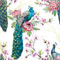 Watercolor Peacock Pattern Stock Photo - 86295750