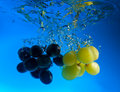 Grapes In Water Stock Image - 8637571