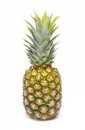 Pineapple Isolated On A White Stock Image - 86322641