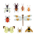 Insect Icon Flat Isolated Nature Flying Butterfly Beetle Ant And Wildlife Spider Grasshopper Or Mosquito Cockroach Royalty Free Stock Photo - 86352385