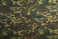 Green Camouflage Pattern Royalty Free Stock Images - 86358209