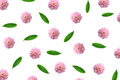 Pattern With Pink Flower Buds, Branches And Leaves Isolated Royalty Free Stock Images - 86374399