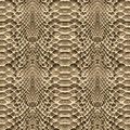 Snake Skin Pattern Texture Repeating Seamless. Vector. Texture Snake. Fashionable Print. Royalty Free Stock Image - 86431326