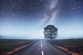 Asphalt Road And Lonely Tree Under A Starry Night Sky Royalty Free Stock Photo - 86469825