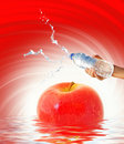 Hand Holding A Bottle Of Water Stock Image - 8654281
