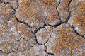 Cracked Soil. Royalty Free Stock Photo - 86521095