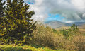 Beautiful Crimea Mountain And Forest Sunny Summer Landscape. Stock Images - 86555014