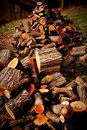 Wood Pile Royalty Free Stock Images - 8661639
