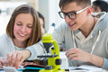 Girl And Boy Working Together At Biology Stock Photo - 86654970