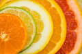 Variety Of Fresh Citrus Fruits Slices Stock Image - 86663391