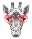 Giraffe In Love! Portrait Of Giraffe With Sunglasses. Royalty Free Stock Images - 86678079