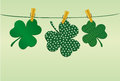 Petals Of Clover With A Picture Hanging On A Rope With Clothespins Royalty Free Stock Photos - 86691278